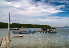 Handelsfischfarm Stockbild