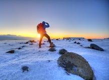Handelsresande för ung man med ryggsäcken, Island royaltyfri foto