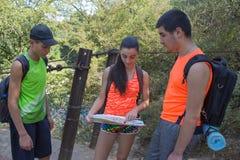 Handelsresande fotvandrare på semester som läser en översikt Handelsresandelopp i reserven sund livsstil på tou för sommarsemeste Fotografering för Bildbyråer