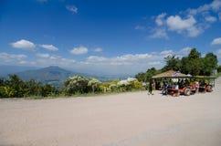 Handelsresande- och traktorfullvuxen hankronhjort på Mt Fuji i Loei, Thailand Royaltyfri Fotografi