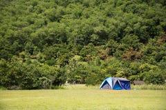 Handelsresande som folket bygger tältet som campar på gräsfältet för, vilar och sover nära berget Royaltyfria Bilder