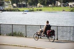 Handelsresandefolket som rider ny design och ny innovation, cyklar på flodstranden av Neckar River Arkivfoton