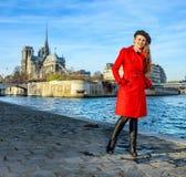 Handelsresandekvinnaanseende på invallning nära Notre Dame de Paris Arkivfoto