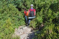 Handelsresandelopp på den konstgjorda körbanan av bergreserven Aktiva fotvandrare Aktiv och sund livsstil på sommarsemester Royaltyfria Foton