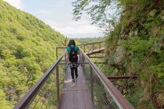 Handelsresandelopp på den konstgjorda körbanan i skogen av bergreserven Trekking tillsammans Aktiva fotvandrare Royaltyfri Fotografi