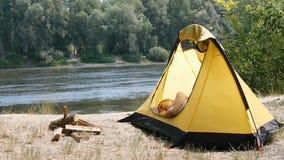 Handelsresanden för den unga kvinnan sover i ett tält Den tröttade fotvandrareflickan avverkar sovande med en bok i ett campa täl lager videofilmer