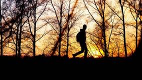 Handelsresanden går på vägen med ryggsäcken under solnedgångkonturn av trädbakgrunden Royaltyfri Bild