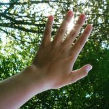 handen aan de zon Stock Foto