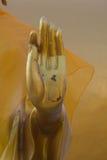 Handen av Buddha på Wat Phra That Doi Kham Chiang Mai, Thailand Arkivbild