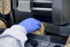 Handen av en människa i handske fungerar på transportör automatisk linje för tillverkning av frasigt helt kornbröd på fabriken arkivbild