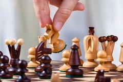 Handen av schackspelaren med riddaren Arkivbilder