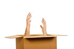 Handen binnen van de doos Stock Afbeeldingen