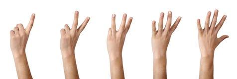Handen, die 1 tot 5 tellen royalty-vrije stock foto