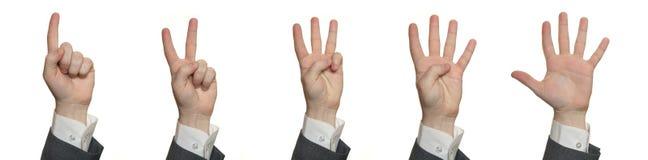 Handen, die 1 tot 5 tellen royalty-vrije stock afbeeldingen