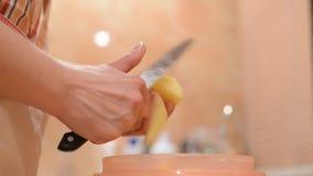 Handen die aardappels snijden in plakken stock footage