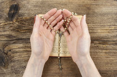 Handen die de Bijbel houden en met een rozentuin bidden Stock Afbeelding