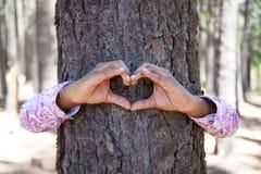Handen die een hartvorm op een boomstam van een boom maken. Stock Afbeelding