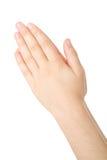 Handen die in gebed worden gesloten Stock Foto