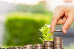 Handen die geld voor het kweken van grafiek van muntstukken stapelen - de investering bedriegt stock foto