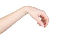 Handen die iets houden Stock Foto's