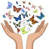 Handen die kleurrijke vlinders vrijgeven Isoleer op witte achtergrond Vector grafiek stock illustratie