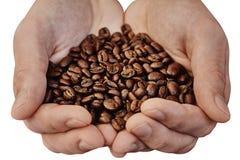 Handen die koffiebonen houden die over witte achtergrond worden geïsoleerd stock afbeelding