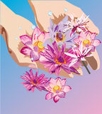 Handen die lotusbloem houden royalty-vrije illustratie