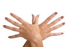 Handen die op een witte achtergrond worden geïsoleerde Stock Fotografie