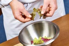 Handen die slabladeren toevoegen in kom met salade, close-up Royalty-vrije Stock Afbeelding