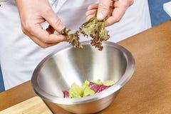Handen die slabladeren toevoegen in kom met salade, close-up Stock Foto's