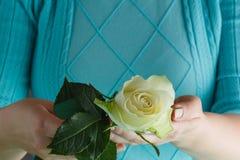 Handen die van de vrouw een wit houden namen toe Royalty-vrije Stock Fotografie