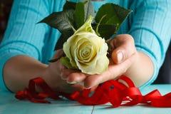 Handen die van de vrouw een wit houden namen toe Stock Foto