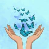 Handen die verbazende turkooise vlinders vrijgeven Vector illustratie vector illustratie