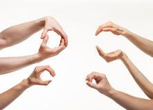 Handen die verschillende grootte tonen Stock Foto's