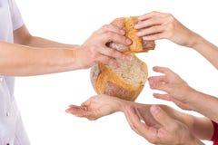 Handen die voor brood grijpen Stock Foto's