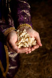 Handen die Wierookhars houden Royalty-vrije Stock Afbeeldingen