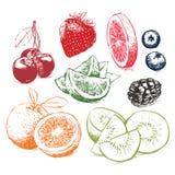 Handen drog samlingen av frukter skissar också vektor för coreldrawillustration Royaltyfria Bilder