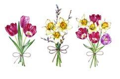 Handen drog vattenfärguppsättningen av buketter fjädrar blommor Arkivbild