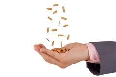 Handen en dalende muntstukken Stock Afbeelding