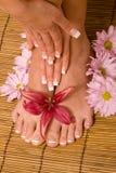 Handen en voeten in manicure en pedicure royalty-vrije stock fotografie