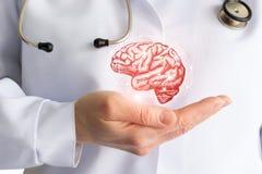 Handen för doktors` s visar hjärnan fotografering för bildbyråer