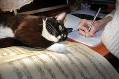 Handen för flicka` s skriver i en anteckningsbok, och en svartvit katt är ly Arkivbild