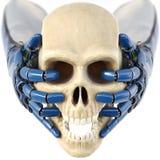 Handen för robot` s håller en mänsklig skalle Fotografering för Bildbyråer