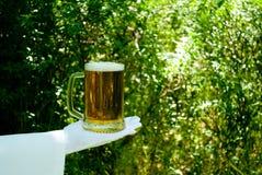 Handen för uppassare` s i en vit handske rymmer ett ölexponeringsglas mot bakgrunden av naturen royaltyfri bild