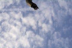 Handen från monumentet till himlen i cirrusmolnmolnen Arkivfoton