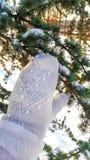 Handen i tumvante trycker på julgranen royaltyfri fotografi