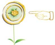 Handen indikerar till guld- flwer Arkivfoto