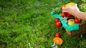 Handen korrigerar gr?nsaker och frukt i tr?korg fr?n den beigea torkduken Prores ultrarapid, 4k stock video