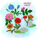 Handen målade den fastställda blomman på vattenfärgbakgrund royaltyfri illustrationer