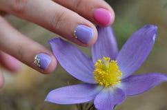 Handen med manikyr trycker på blommorna av snödroppen Royaltyfria Foton